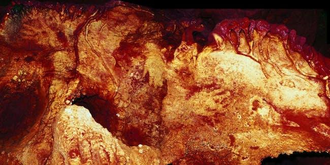 neanderthal cave painting