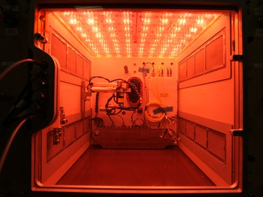 Meet NASA's New Space Farming Pod for the Space Station