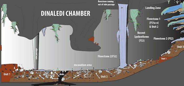 Dinaledi Chamber, South Africa