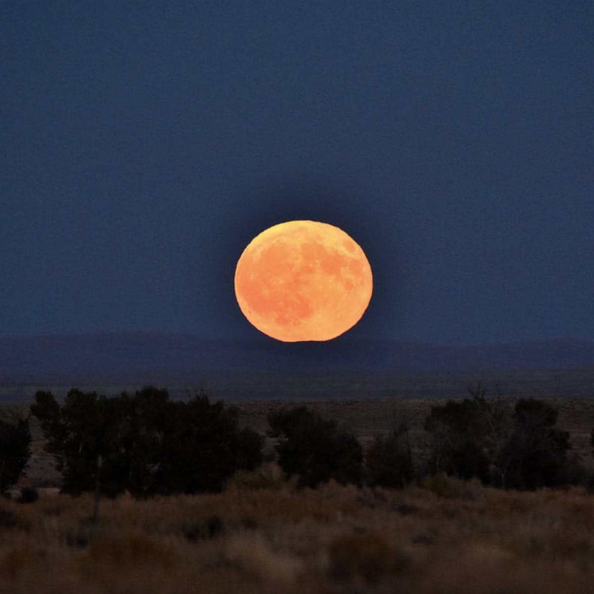 """Spring Equinox: There's a """"Super Worm Moon"""" Coming Tonight"""