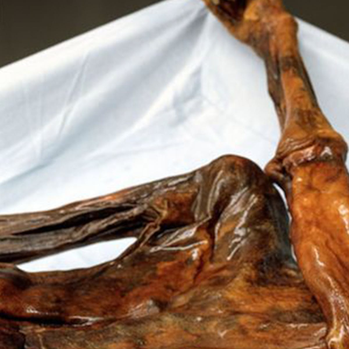 3D Printing Gives Ötzi the Iceman a Plastic and Resin Clone