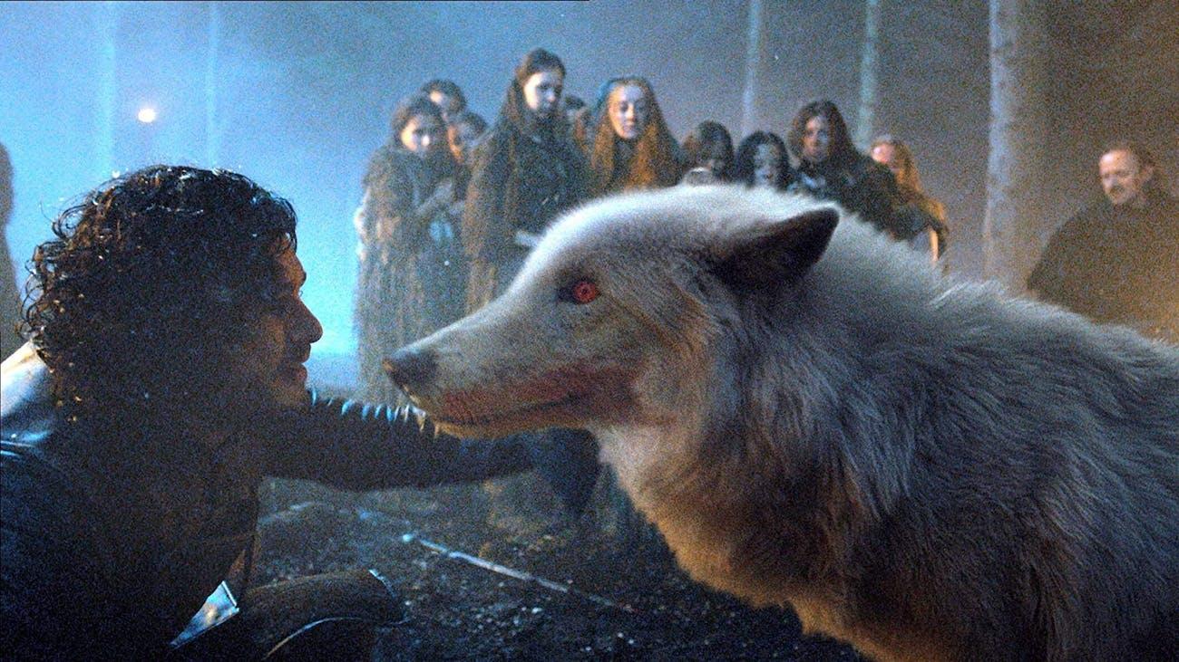 Jon Ghost Game of Thrones