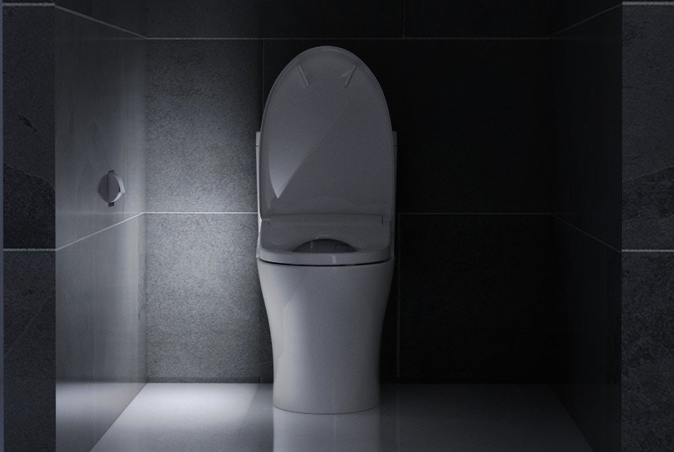 I Met a Robo-Toilet and Now I Think I'm in a Relationship