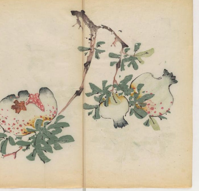 An image taken from the world's oldest polychrome book, which people were not allowed to open until 2015. While this book wasn't scanned using this new technique, similarly fragile books might one day be read using these technologies.