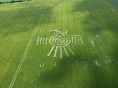 It's Crop Circle Season!