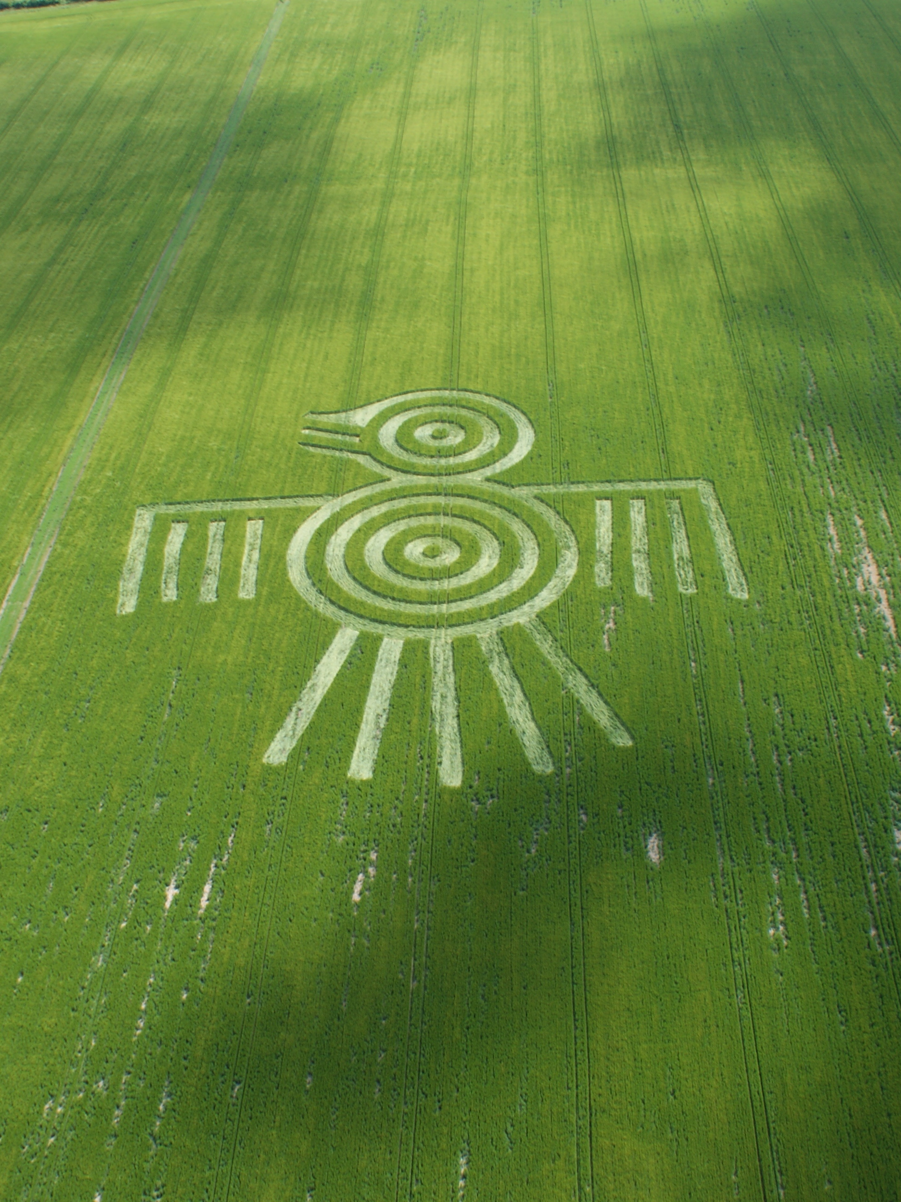 The Science of crop circle research is like a crime scene investigation