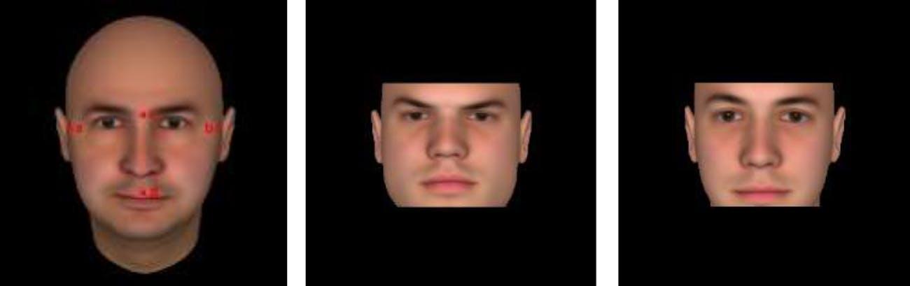 face widths