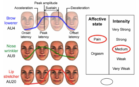 Faces of pain orgasm