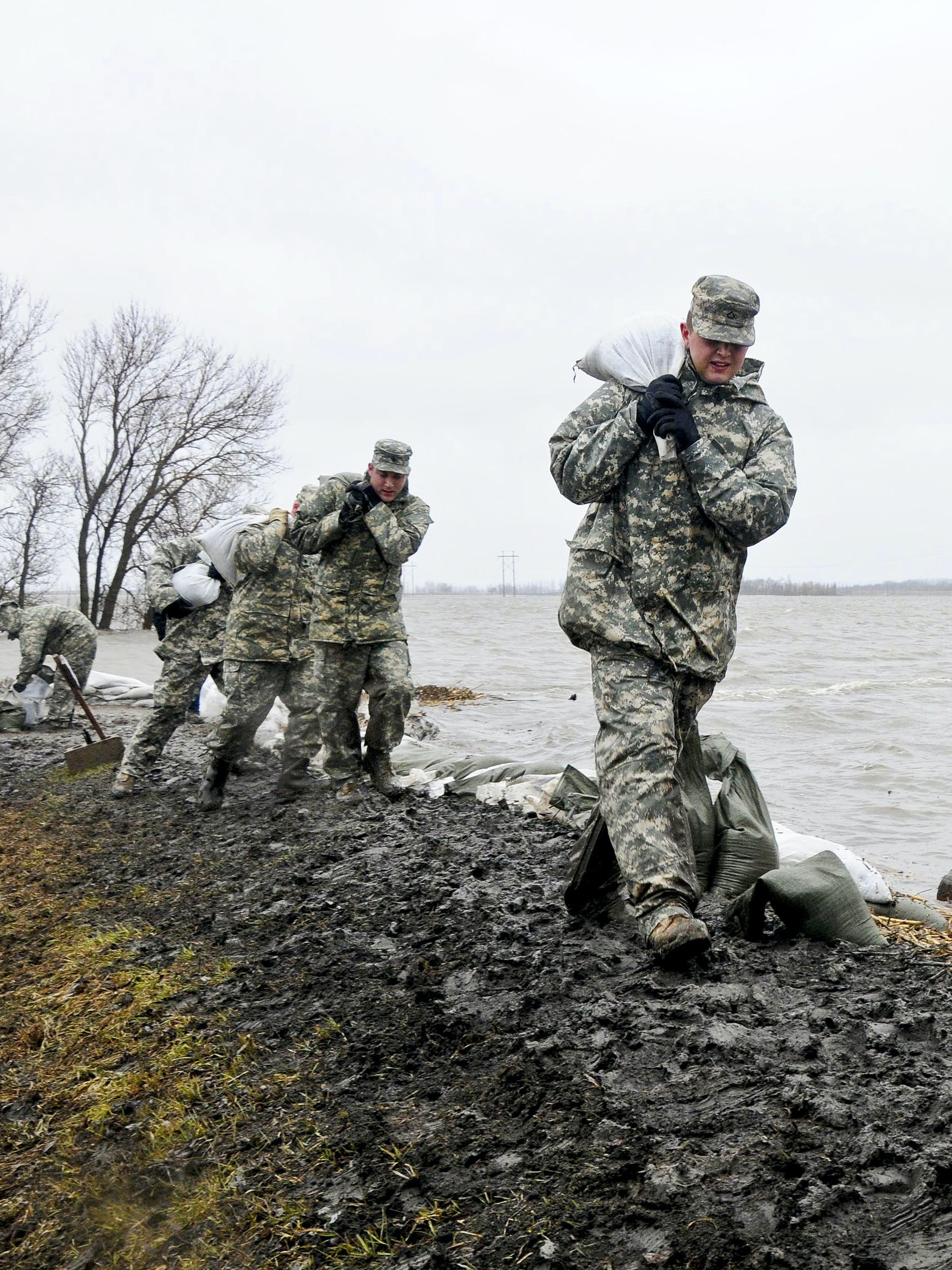 U.S. Army Spcs. Eric Wiederholt (right), Joshua Lanzdorf and Randy Birchfield (3rd from right) carry sandbags in the rain along a flood levee for placement on a flood barrier in a rural farmstead in Cass County, N.D., on April 10, 2011. Wiederholt, Lanzdorf and Birchfield are assigned to the 815th Engineer Company, Detachment 2, based in Lisbon, N.D.