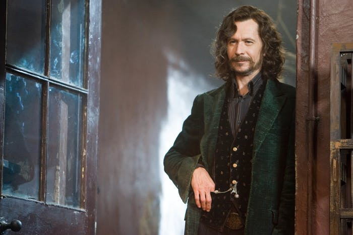 Face it: Sirius Black was your favorite animagus.