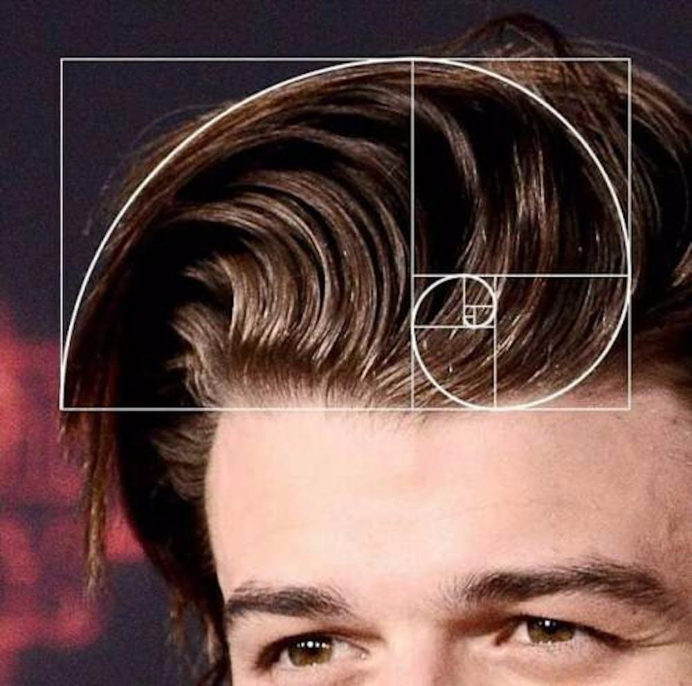 steve stranger things hair fibonacci spiral