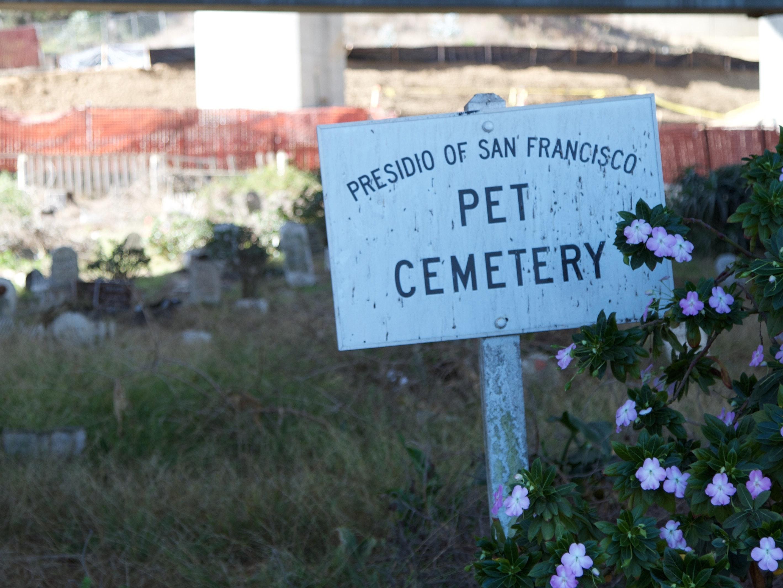 The Nine Lives of San Francisco's Presidio Pet Cemetery