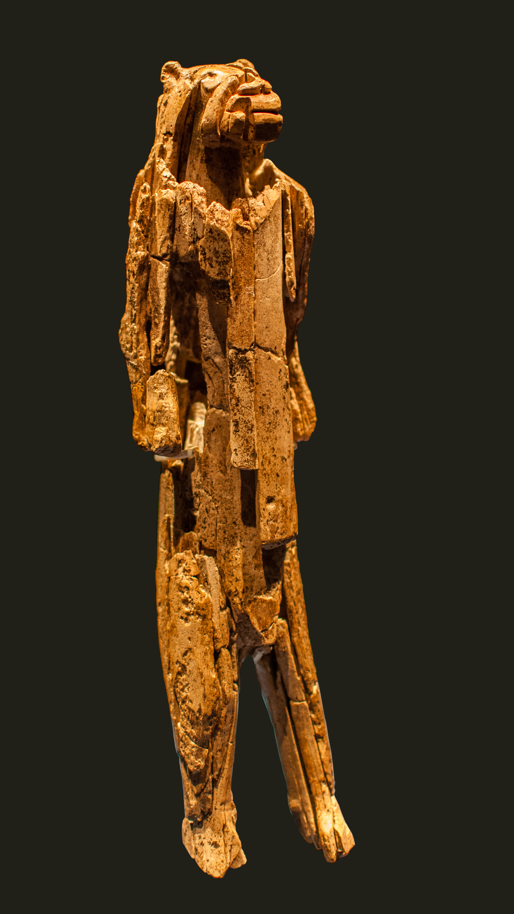 The Stadel Lion Man is thought to be one of the earliest examples of Homo sapiens imagining things that do not exist. Religions and gods came next.