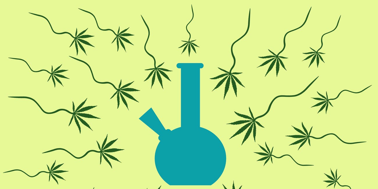 marijuana, sperm