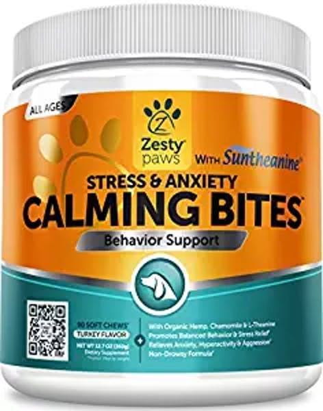 Best CBD Treats for Your Dog | Inverse