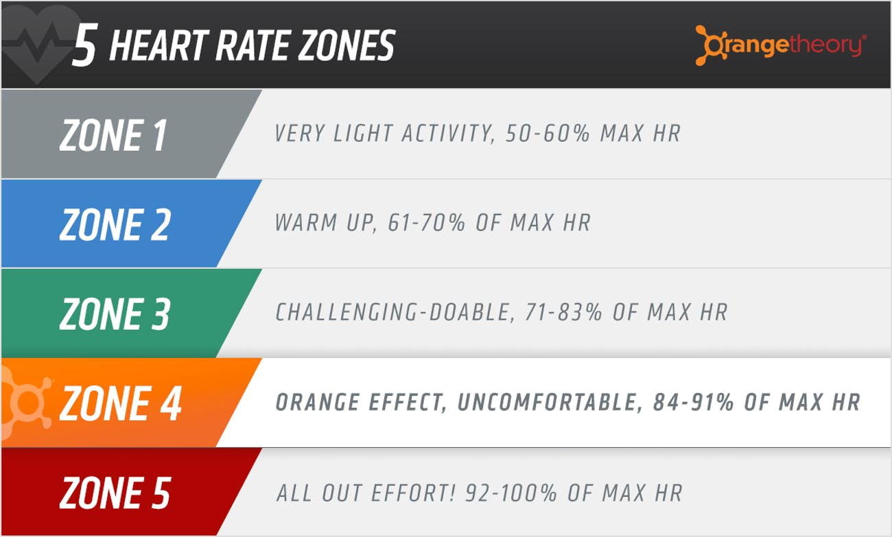 Does Orange Theory Work? The Science of an