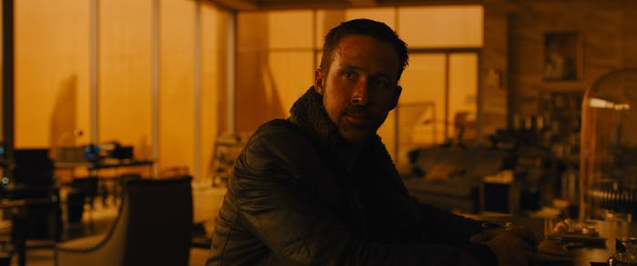 """Replicants in 'Blade Runner' are sometimes called """"skinjobs"""" as an insult."""