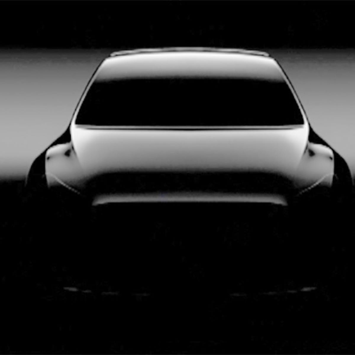 Tesla Model Y Elon Musk Announces Release Date For Electric Suv