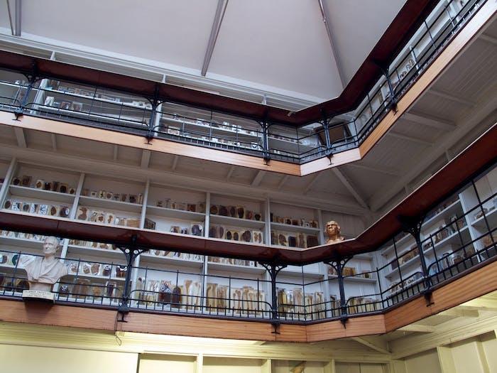 Inside Barts Pathology Museum.