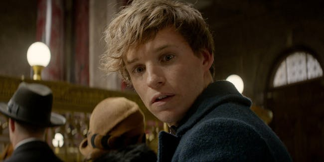 Newt Scamander is joined by some new faces in the 'Fantastic Beasts' sequel.