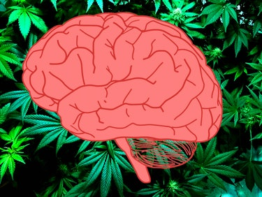Medicine's Secret Weapon Against Brain Cancer Is Weed