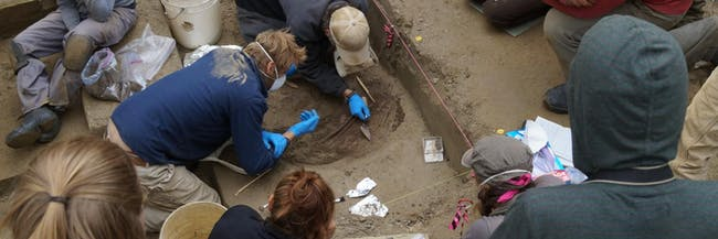Ancient genomes reveal insight into first Native American communities.