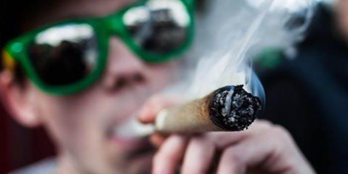 Weed Marijuana Cannabis 420