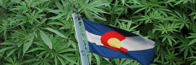 Colorado's Department of Education will receive $9.7 million from marijuana taxes.