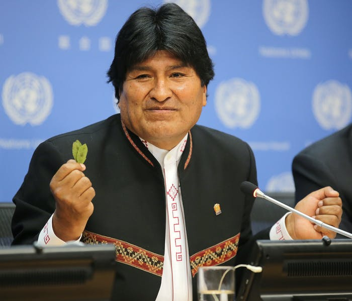 Bolivian President Evo Morales has been campaigning to reverse the international decree against coca leaf since 2009.