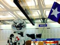 Cows Microbes Space NASA Protein