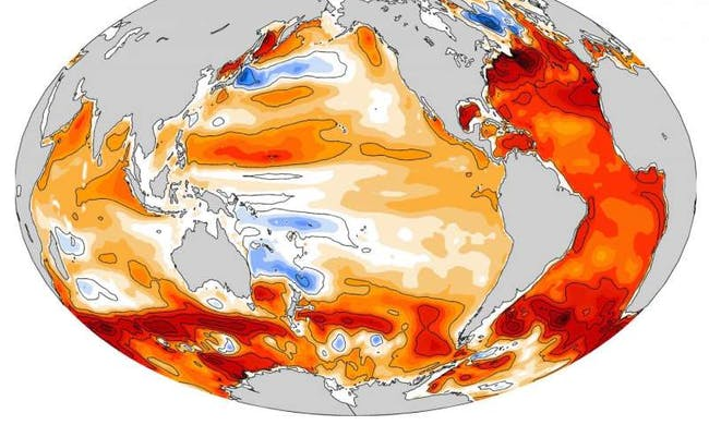 warming ocean