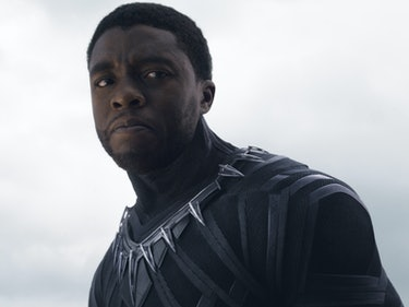 Several MCU Characters Will Return in 'Black Panther'