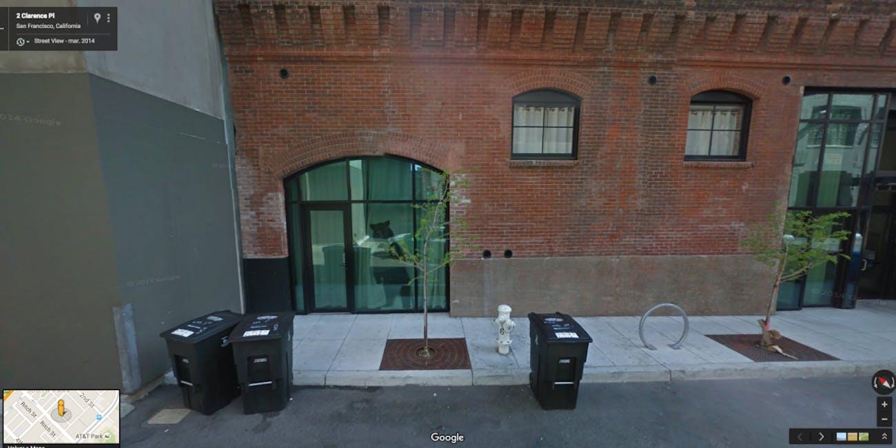 Bear San Francisco street view google maps weird images