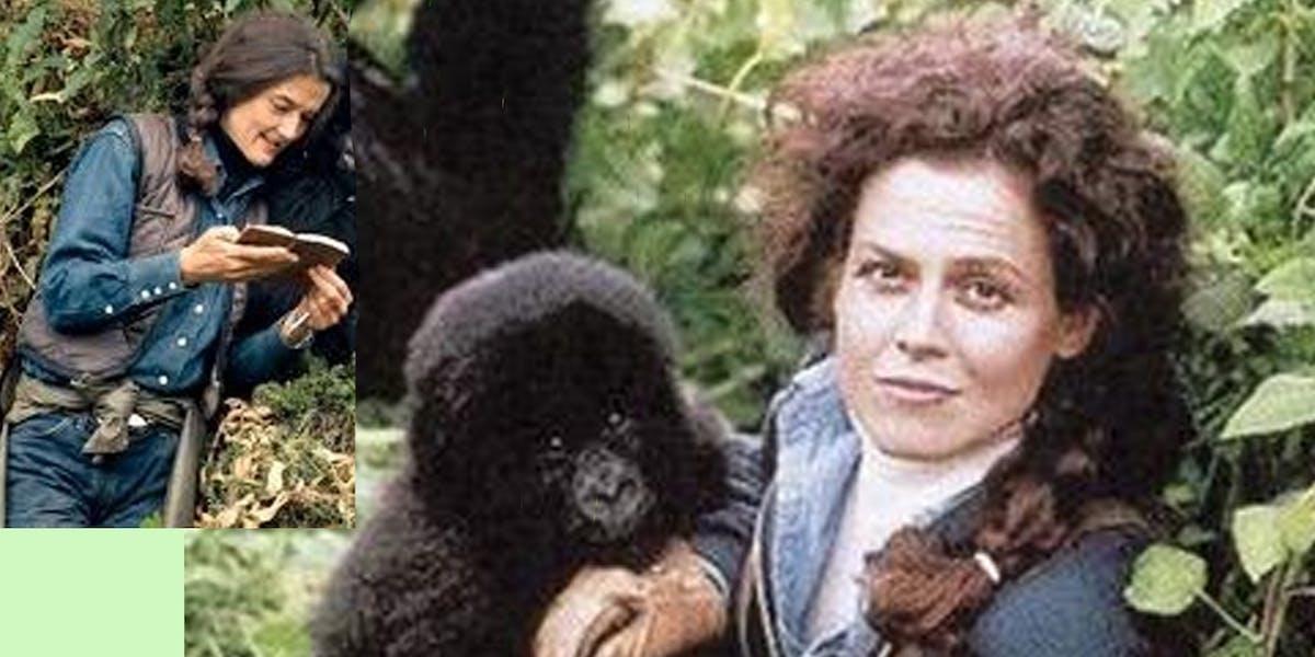 Dian Fossey / Sigourney Weaver