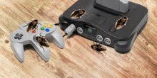 Bug Experts Finally Explain Why Insects Love Video Game Consoles