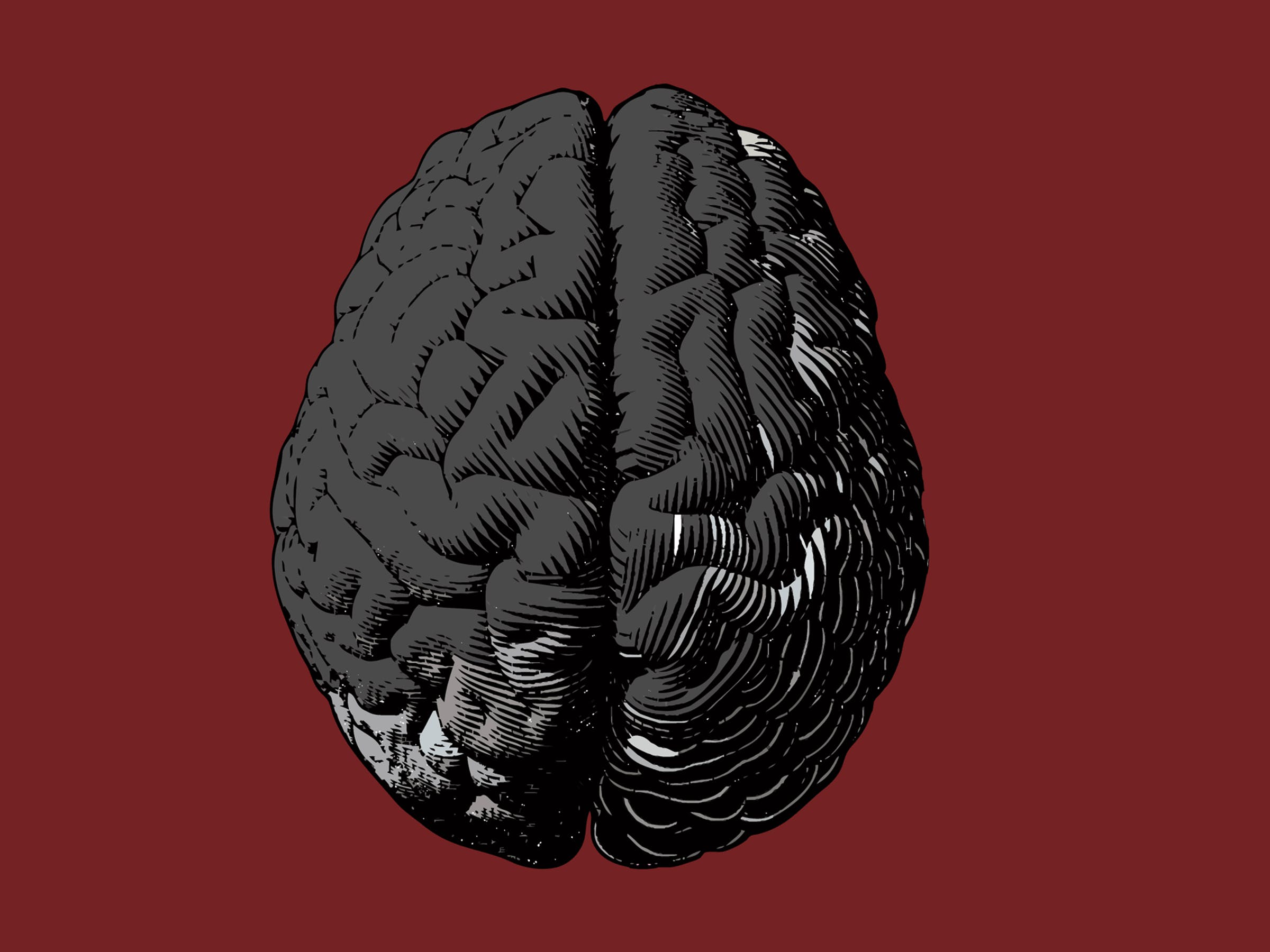 Brain vector illustration on red