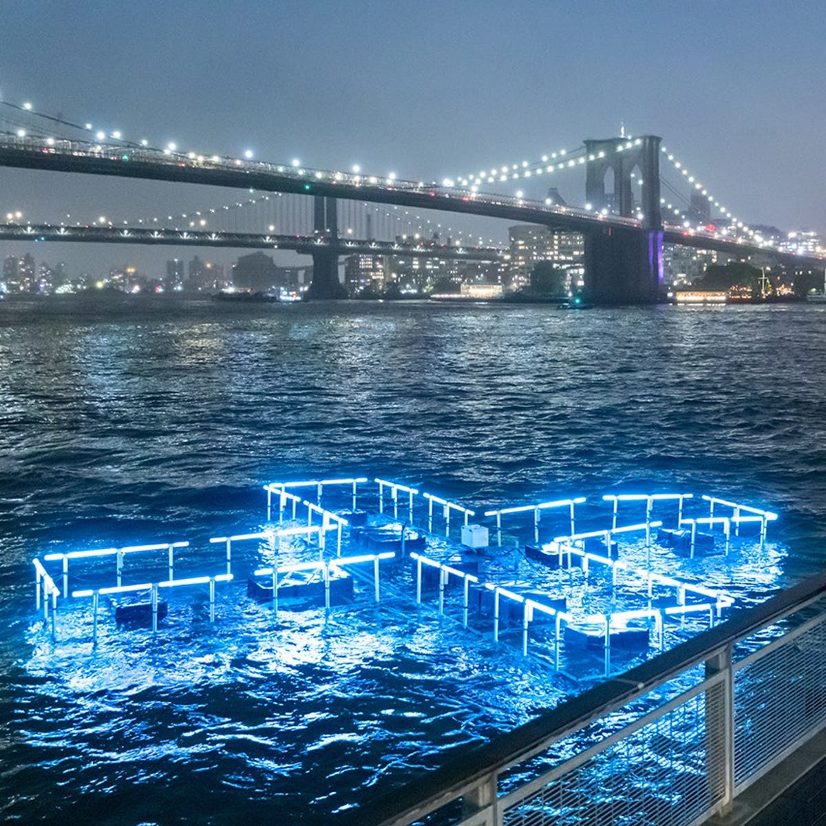New Yorkers might be safely swimming in the East River by 2025