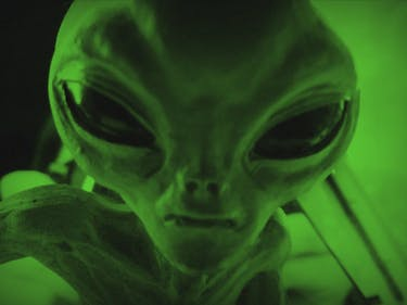 Space Alien Reports Have Overwhelmed Trump's Immigration Hotline