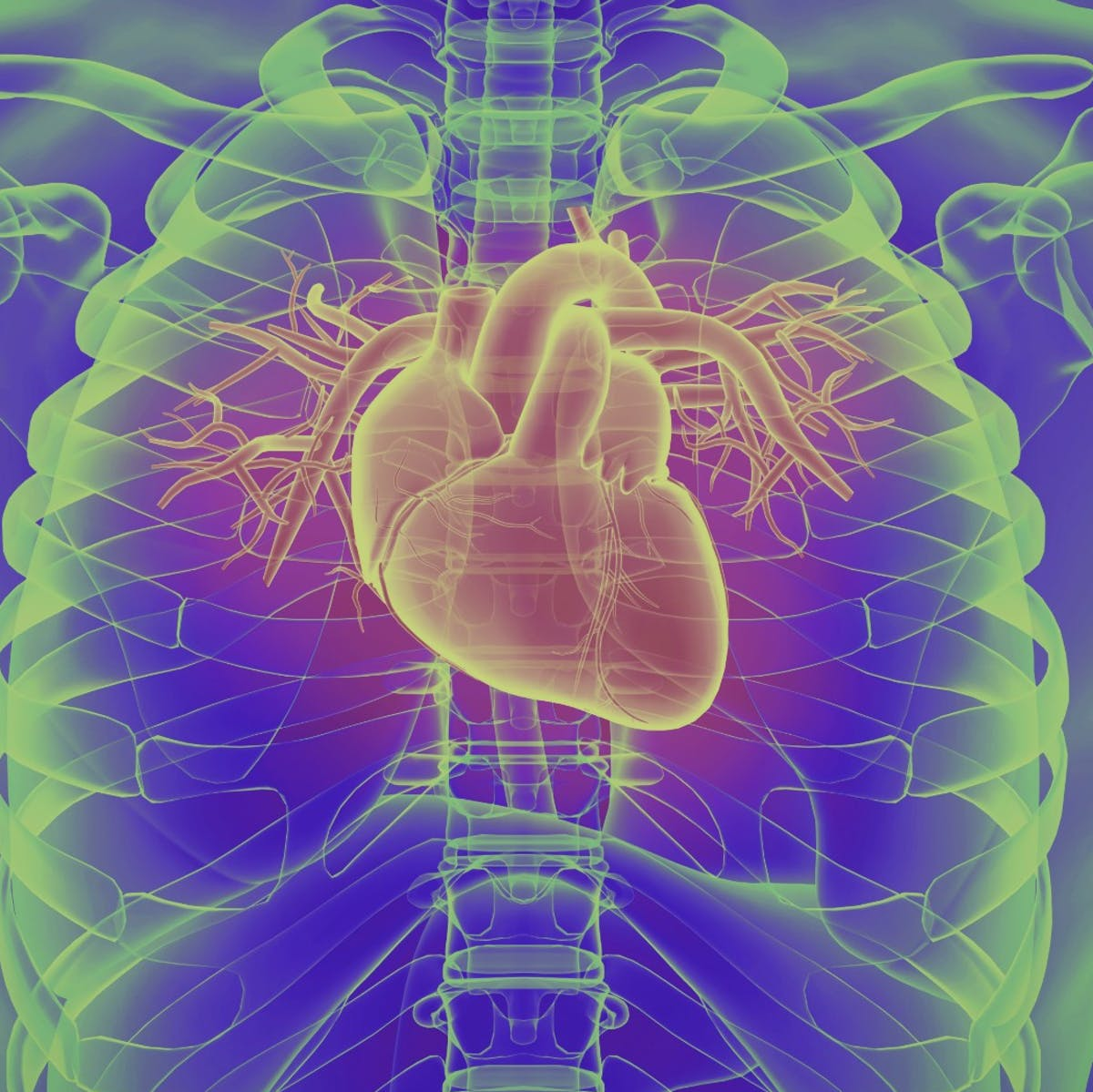 Frequent marijuana use could literally change a person's heart