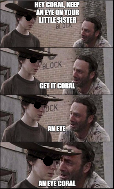 og55ty4kmfzrsv3u4siwqmsqhil1cdq9a7dogr0jkpupng the 25 best memes from 'the walking dead' inverse