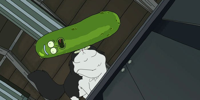 'Rick and Morty' Pickle Rick Cat