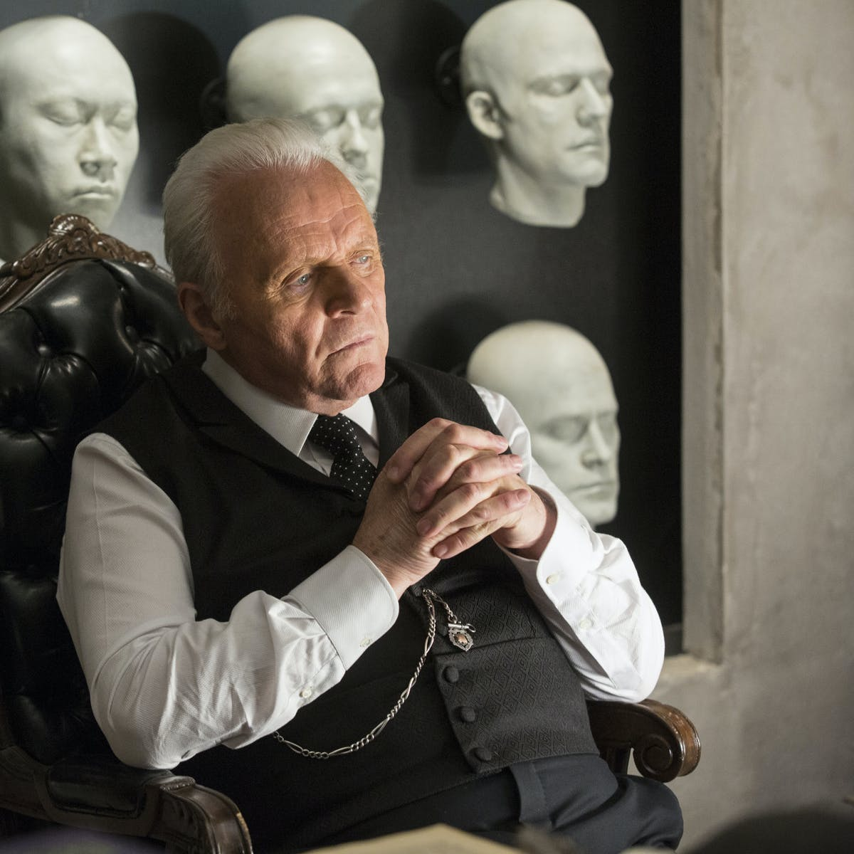 Ford's Story was The Real Maze on Westworld