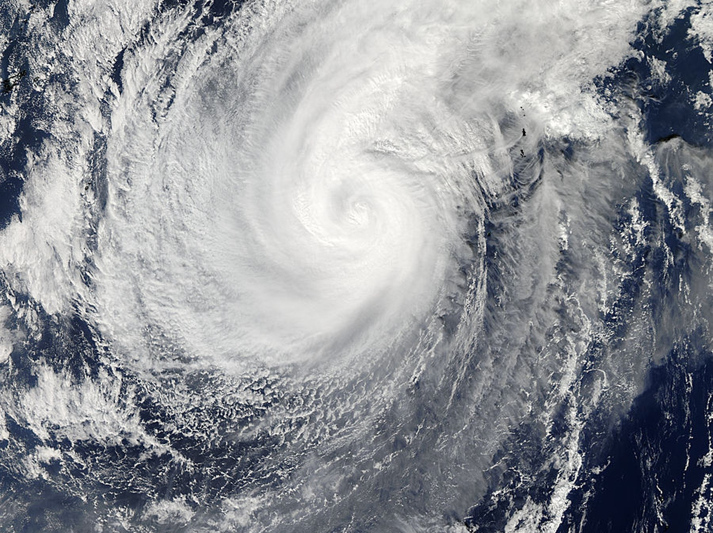 New Turbines Could Let a Single Typhoon Power Japan for 50 Years