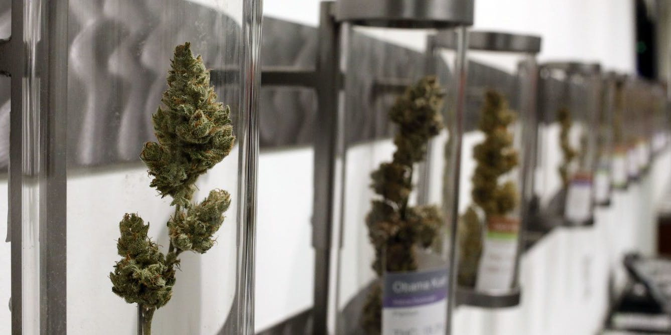 Marijuana Legalization: Big Changes Sweep Across the Country