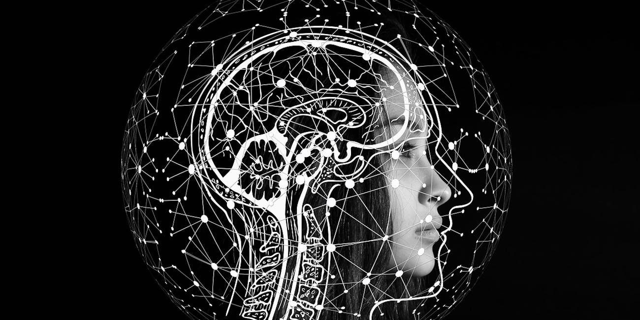 brain neurons technology implants