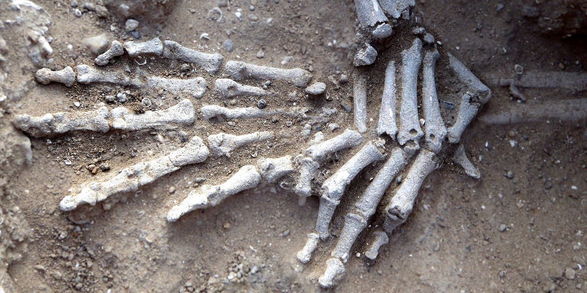 Detail of hands of in situ skeleton found at Nataruk. Position suggests they had been bound.