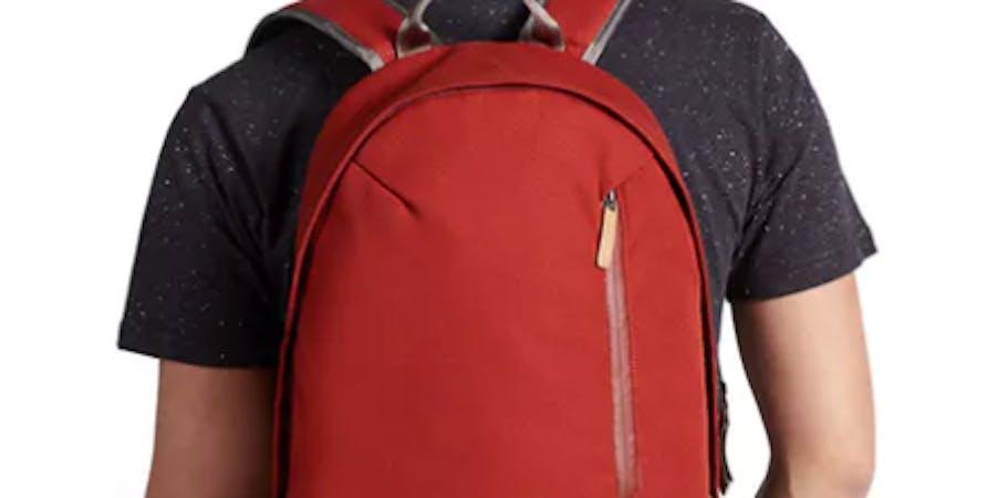 backpack, cheap backpack, backpack under 100 dollars, commuter bag, laptop backpack