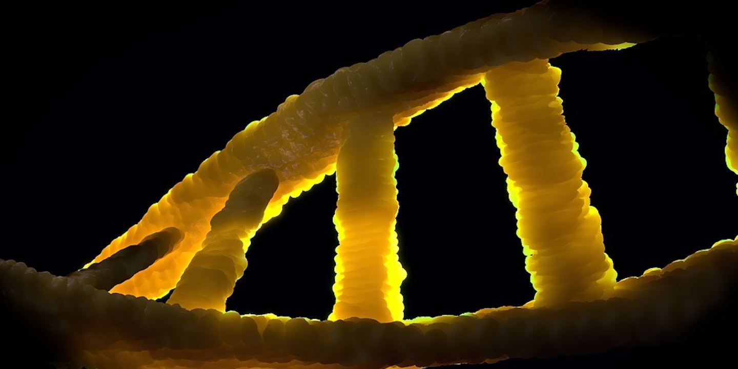 The New, Expanded Genetic Alphabet Rewrites Life
