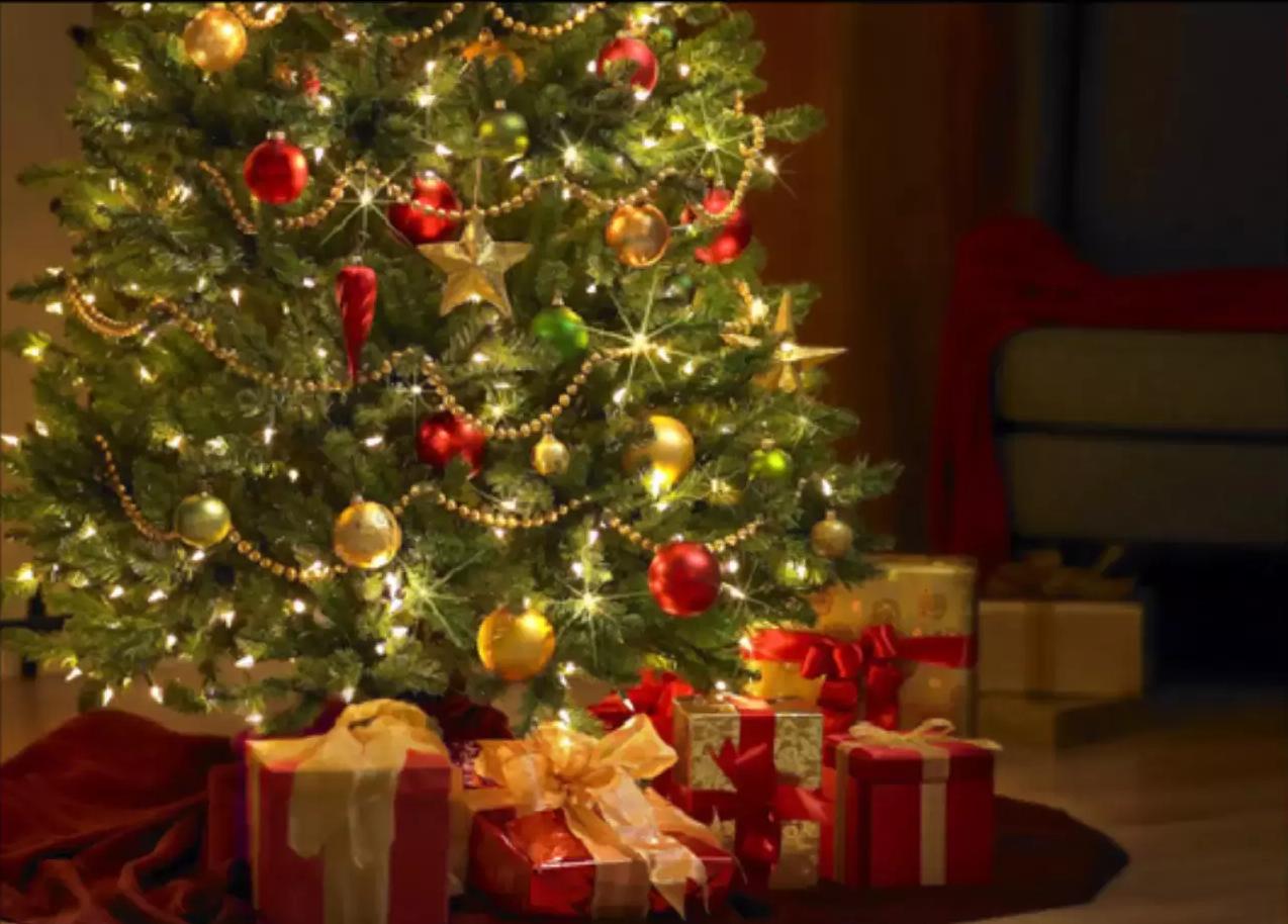 Image Of The Christmas Tree Song The Christmas Tree Song YouTubeThe ...