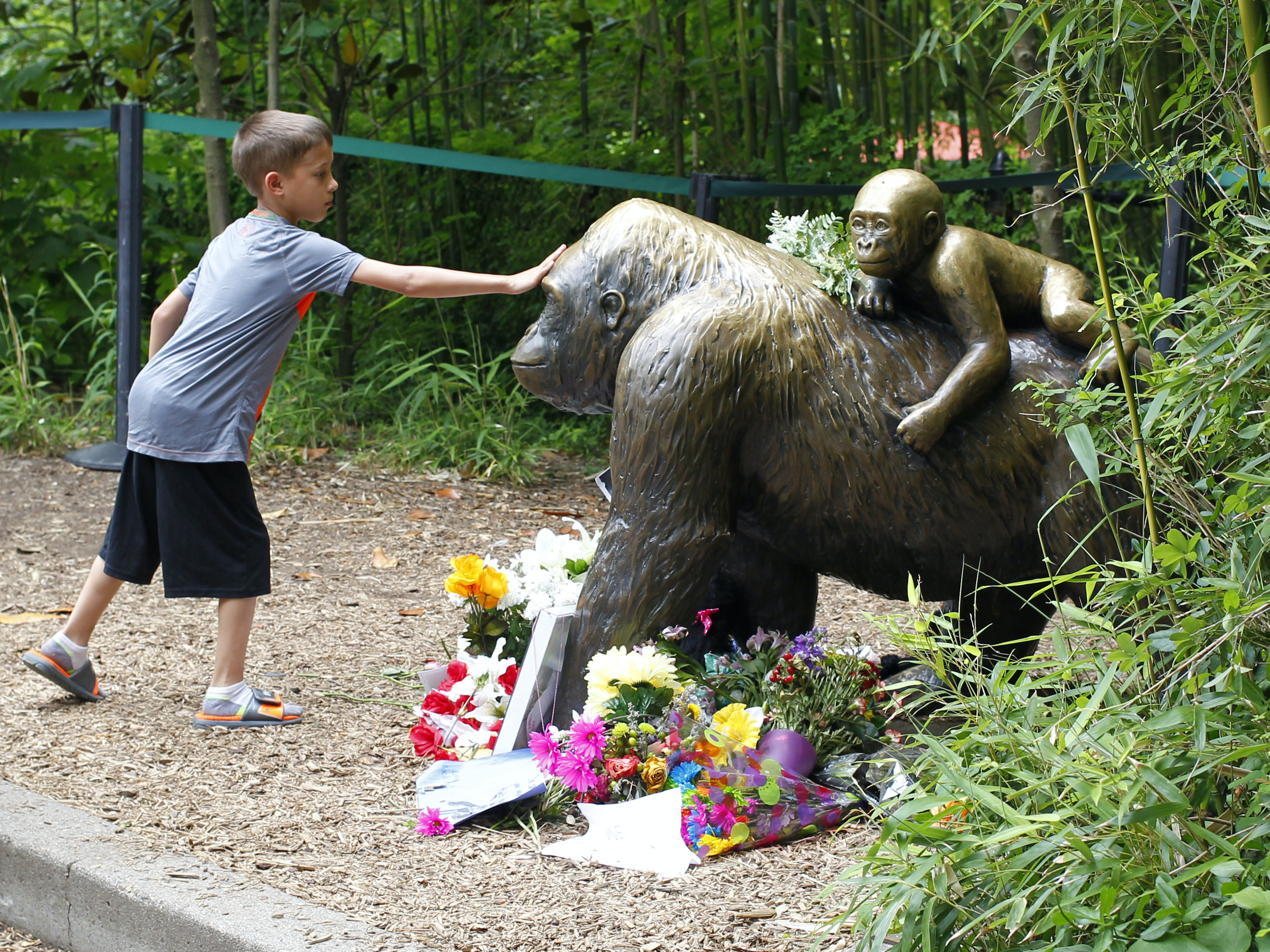 Visitors pay tribute to the late gorilla Harambe.